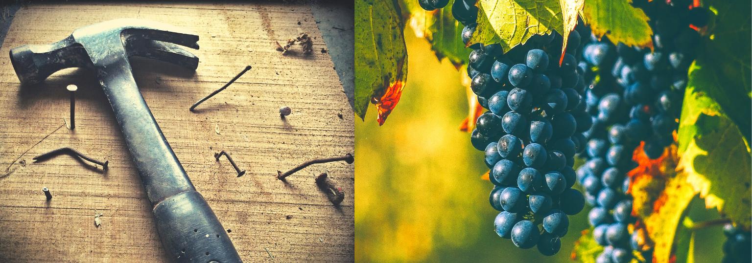 Hammer und Weintrauben - Über uns und die Schwerpunkte der Steuerberatung Schwarz und Bengsch Ingelheim - über uns